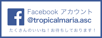 news_facebook.png